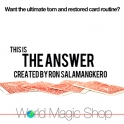 THE ANSWERS  -  RON SALAMANGKERO