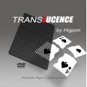 TRANSLUCENCE  -  HIGPON Exclu AMF